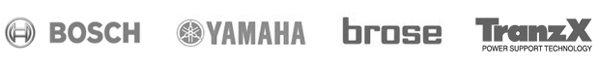 servicio-tecnico-bosch-yamaha-brose-tranz-bicicletas-electricas